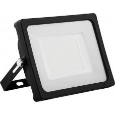 Светодиодный прожектор LL-921 IP65 50W 6400K